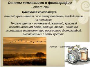 Основы композиции в фотографии. Совет №5 Цветовая композиция. Каждый цвет им