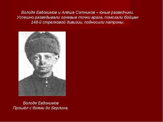Володя Евдокимов Прошёл с боями до Берлина. Володя Евдокимов и Алёша Сотников...
