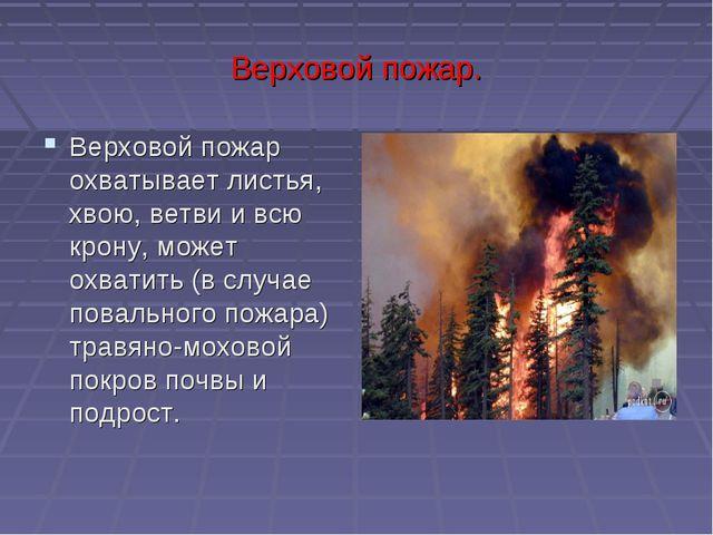 Верховой пожар. Верховой пожар охватывает листья, хвою, ветви и всю крону, мо...