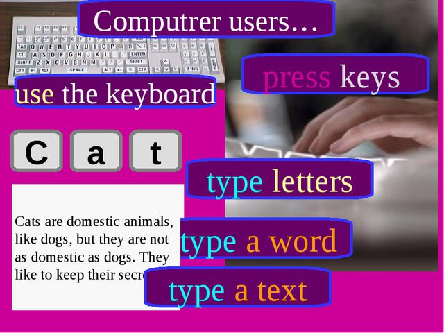 C a t Cat type letters type a word Cats are domestic animals, like dogs, but...