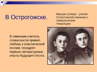 В Острогожске. В гимназии учитель словесности привил любовь к классической п