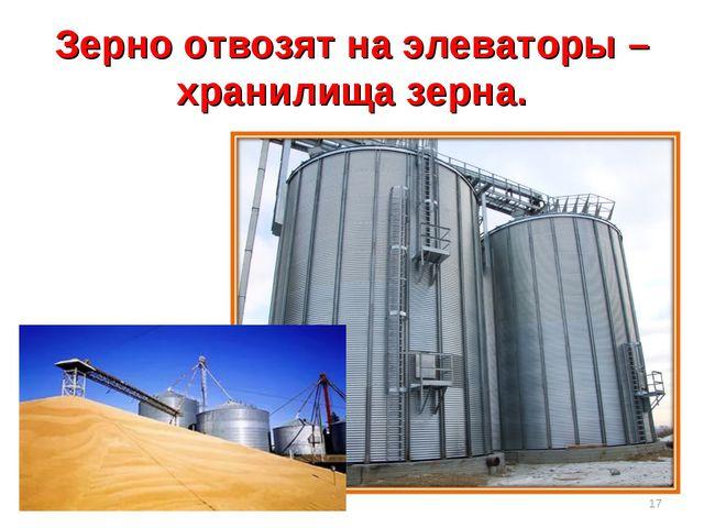 Зерно отвозят на элеваторы – хранилища зерна. *