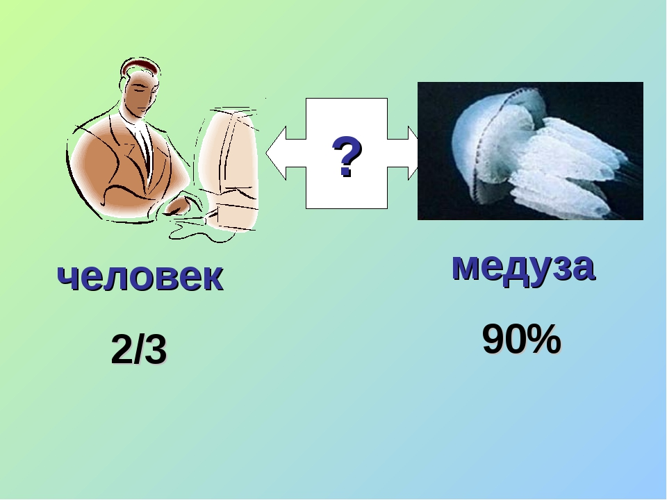 ? медуза 90% человек 2/3