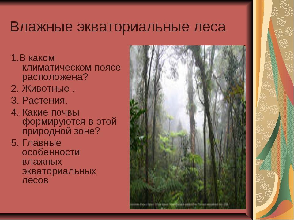 Влажные экваториальные леса 1.В каком климатическом поясе расположена? 2. Жив...