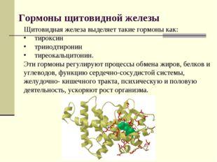 Гормоны щитовидной железы Щитовидная железа выделяет такие гормоны как: тирок