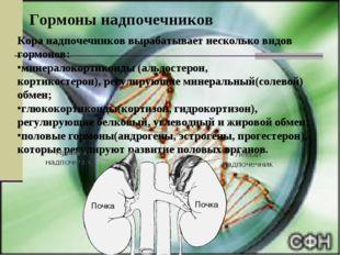 Гормоны надпочечников Кора надпочечников вырабатывает несколько видов гормоно