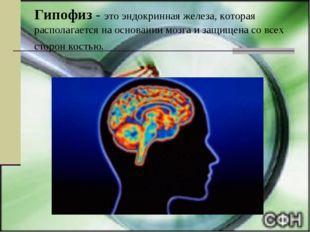 Гипофиз - это эндокринная железа, которая располагается на основании мозга и