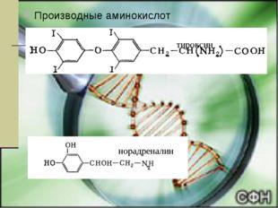 Производные аминокислот тироксин норадреналин