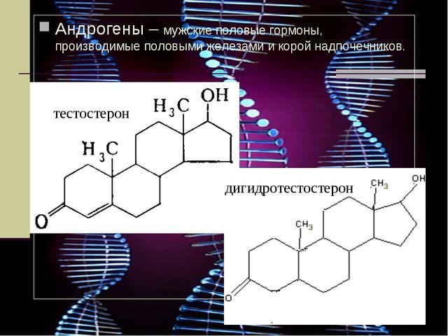 Андрогены – мужские половые гормоны, производимые половыми железами и корой н...