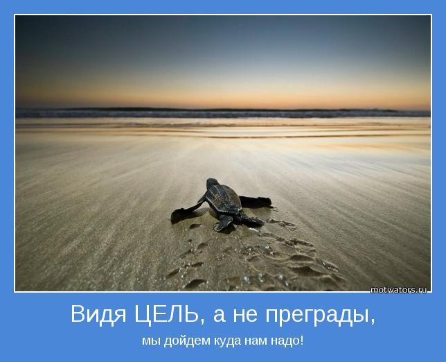 hello_html_m535354b6.jpg