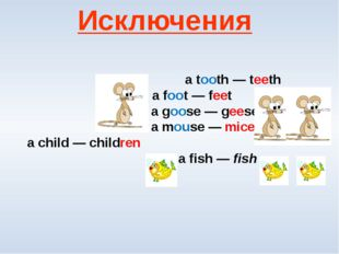 a tooth — teeth  a foot — feet a goose — geese  a mouse — mice a child — c