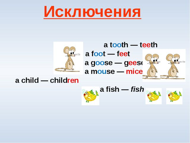 a tooth — teeth  a foot — feet a goose — geese  a mouse — mice a child — c...