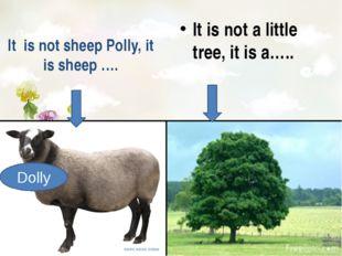 It is not sheep Polly, it is sheep …. It is not a little tree, it is a….. Do