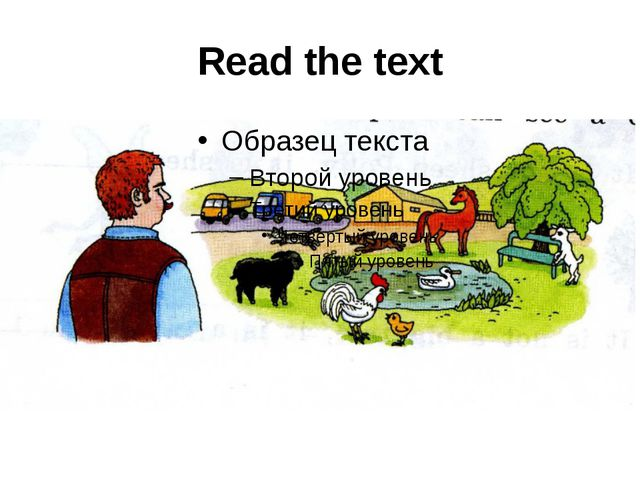 Read the text