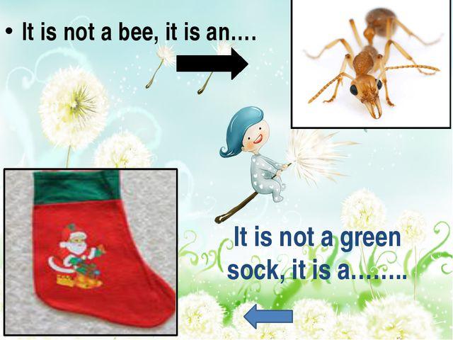 It is not a green sock, it is a…….. It is not a bee, it is an….