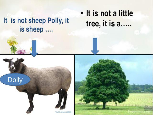 It is not sheep Polly, it is sheep …. It is not a little tree, it is a….. Do...