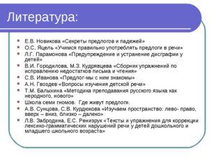 Литература: Е.В. Новикова «Секреты предлогов и падежей» О.С. Яцель «Учимся пр