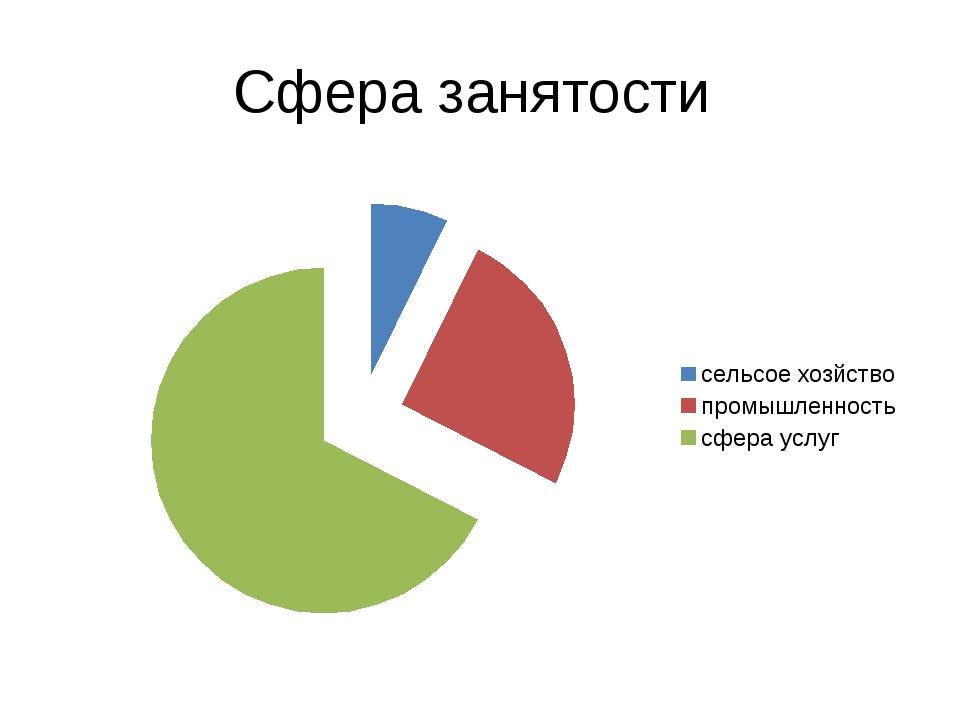 Сфера занятости