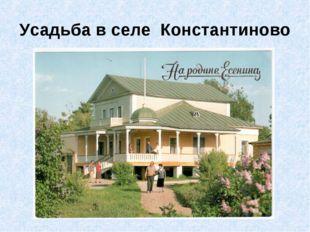 Усадьба в селе Константиново