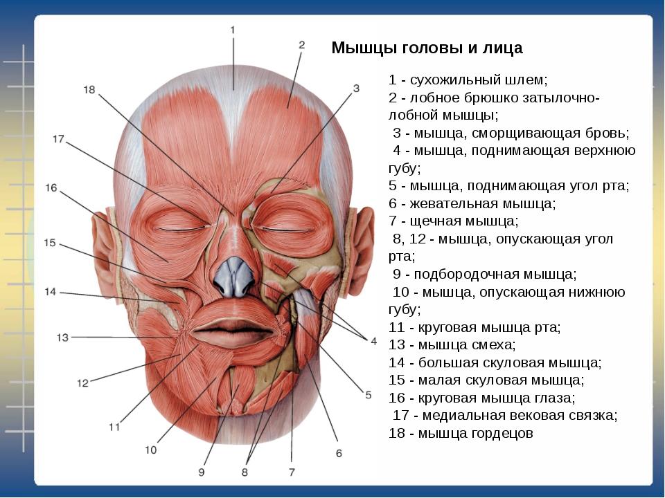Миозит височных мышц