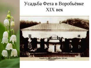 Усадьба Фета в Воробьёвке ХIХ век