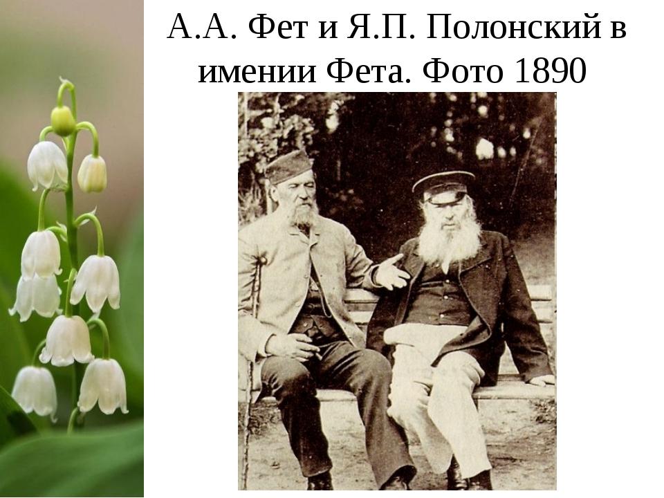 А.А. Фет и Я.П. Полонский в имении Фета. Фото 1890