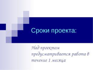 Сроки проекта: Над проектом предусматривается работа в течение 1 месяца