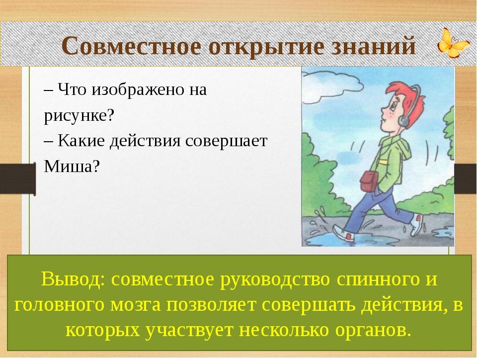 Совместное открытие знаний – Что изображено на рисунке? – Какие действия сов...