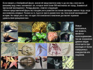 Живые ископаемые, как правило, являются палеоэндемиками, так как сохранение д