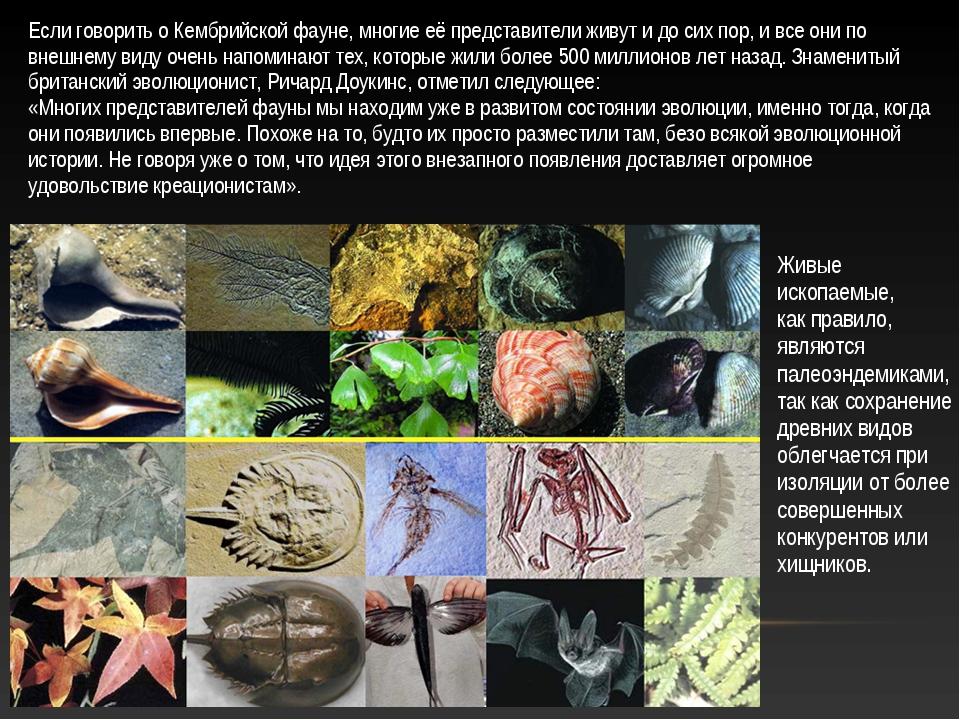 Живые ископаемые, как правило, являются палеоэндемиками, так как сохранение д...