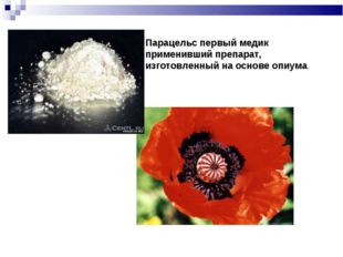 Парацельс первый медик применивший препарат, изготовленный на основе опиума.