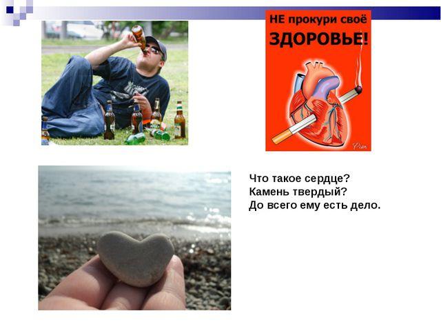 Что такое сердце? Камень твердый? До всего ему есть дело.