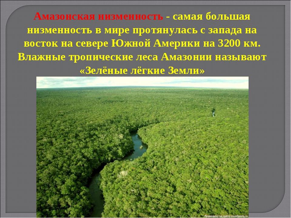 Амазонская низменность - самая большая низменность в мире протянулась с запад...
