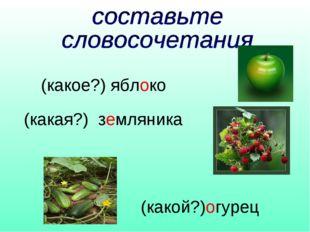 (какое?) яблоко (какая?) земляника (какой?)огурец