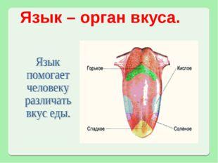Язык – орган вкуса.