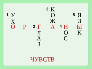 У Х О Г Л А З К О Ж А С Н О Я З Ы К Р ЧУВСТВ 3 1 5  2 4