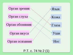 Орган зрения Орган слуха Орган обоняния Орган вкуса Орган осязания Язык Кожа
