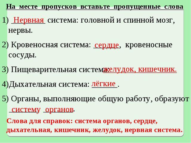 На месте пропусков вставьте пропущенные слова ________ система: головной и сп...