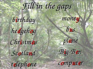 Fill in the gaps birthday hedgehog Christmas Scotland telephone money bus pla