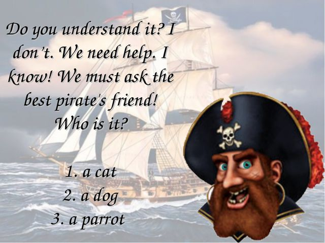 Do you understand it? I don't. We need help. I know! We must ask the best pir...