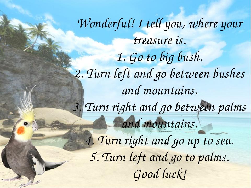 Wonderful! I tell you, where your treasure is. 1. Go to big bush. 2. Turn lef...