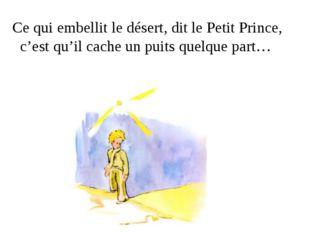 Ce qui embellit le désert, dit le Petit Prince, c'est qu'il cache un puits q