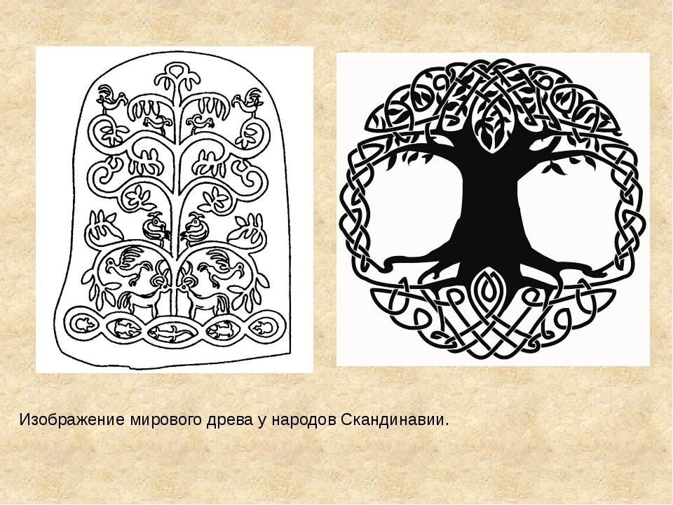Изображение мирового древа у народов Скандинавии.