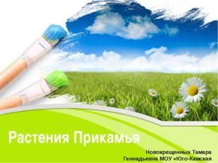 Растения Прикамья Новокрещенных Тамара Геннадьевна МОУ «Юго-Камская СОШ». Pow