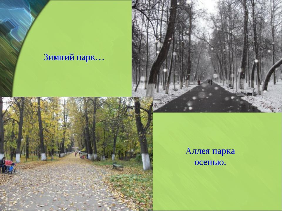 Зимний парк… Аллея парка осенью.
