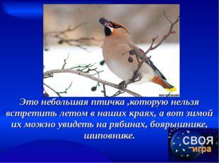 Это небольшая птичка ,которую нельзя встретить летом в наших краях, а вот зим
