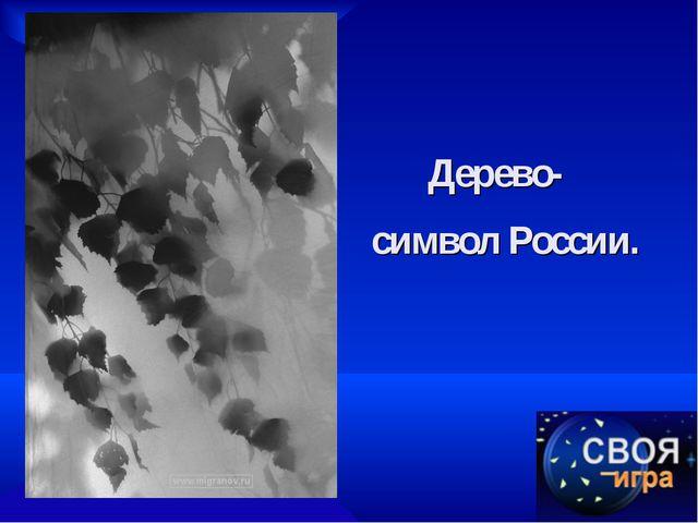 Дерево-   символ России.