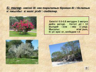 Бұталар– негізгі діңнен таралатын бірнеше діңі болатын көпжылдық ағаштәрізді
