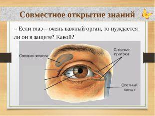 Совместное открытие знаний – Если глаз – очень важный орган, то нуждается ли