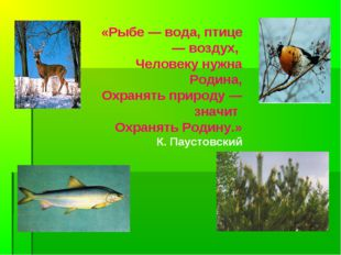 «Рыбе — вода, птице — воздух, Человеку нужна Родина, Охранять природу — значи
